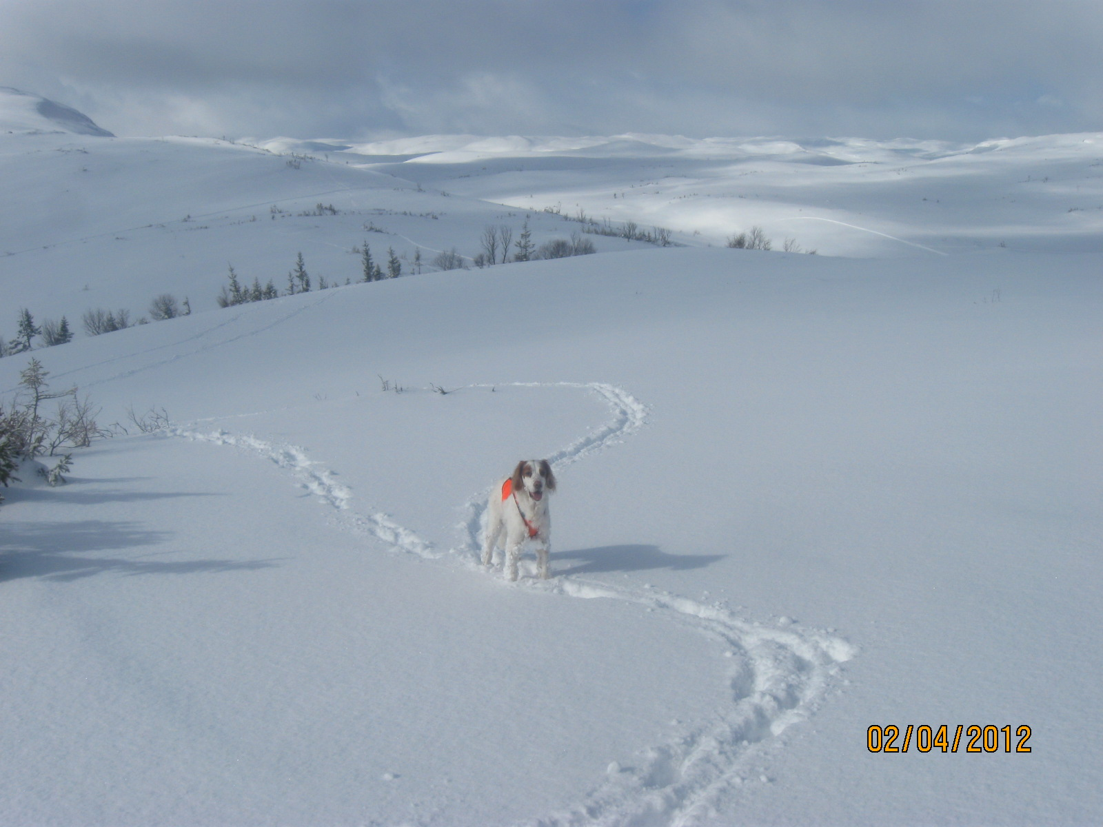 hytta-april2012-6