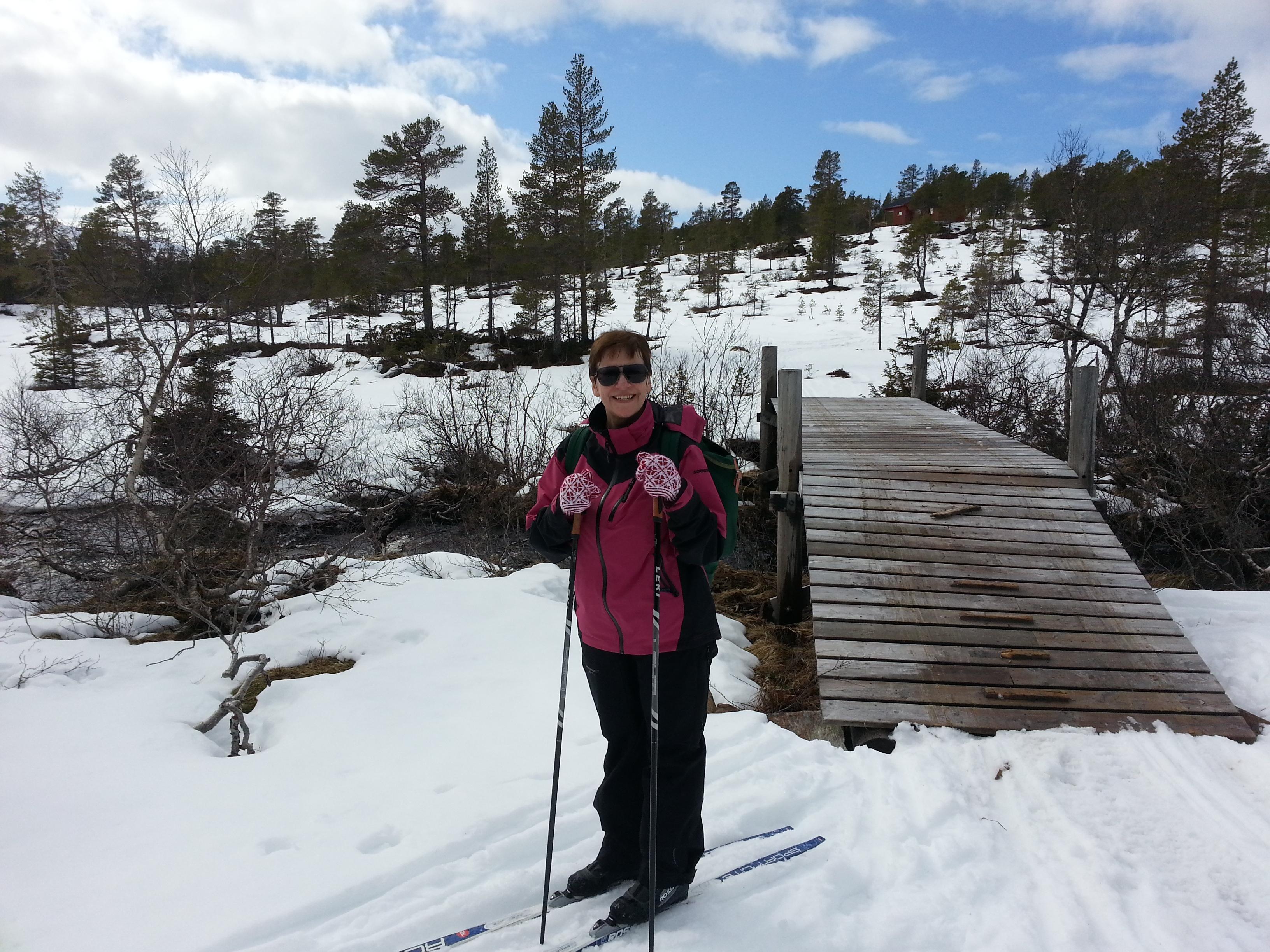 Dårlig skiføre Olheibekkbrua 180414